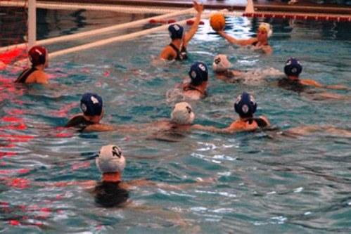 Cusb la piscina dello sterlino passa al comune di bologna - Piscina sterlino bologna ...