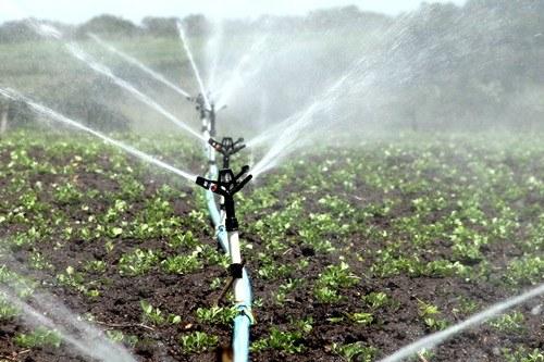 Sistemi di irrigazione pi efficienti il progetto figaro for Sistemi di irrigazione