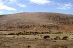 Il sito di Jebel Irhoud, in Marocco. Credit: Shannon McPherron, MPI EVA Leipzig, License: CC-BY-SA 2.0.
