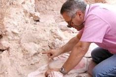La mandibola Irhoud 11: si tratta della prima mandibola di uomo adulto quasi completa scoperta nel sito di Jebel Irhoud. Credit: Jean-Jacques Hublin, MPI EVA Leipzig.