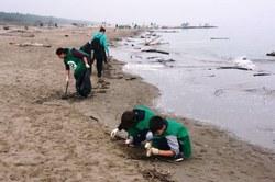 Spiaggialonga 2019
